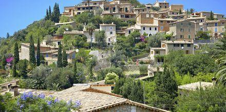 Kaunis Deyan kylä Mallorcan länsirannikolla. Monet taiteilijat ovat viihtyneet tässä kyseisessä kylässä.