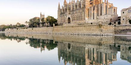 Upea La Seu Palmassa on peräisin 1300-luvulta, ja on yksi Mallorcan suurimmista matkailukohteista.