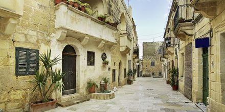 Gozo on pittoreski alue, joka on suosittu niin paikallisten kuin matkailijoidenkin keskuudesa.