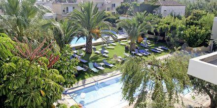 Allasalue, Hotelli Marakis, Platanias, Kreeta.
