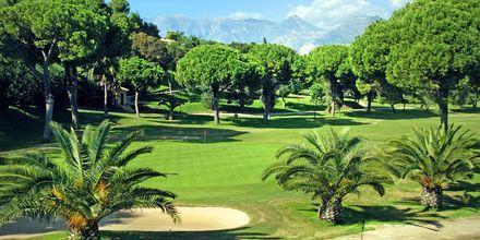 Golf-kenttä Marbellassa.