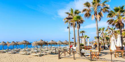 Ranta Marbellassa, Espanjassa.