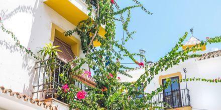 Marbella, Espanja.