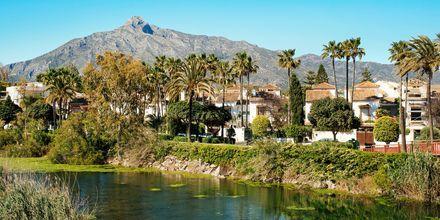 Joki Marbellassa, Espanjassa.