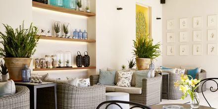 Talvipuutarha, Hotelli MarBella Nido Suite Hotel & Villas, Korfu.