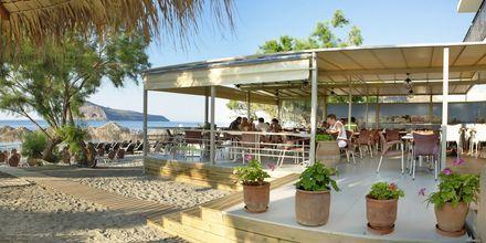 Margarita Beach Resort G D's Hotels