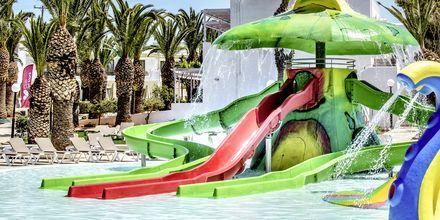 Lastenallas, Hotelli Marina Beach, Gouves, Kreeta.