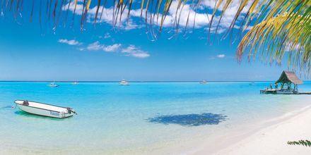 Unelmarantoja ja kirkasta vettä Mauritiuksella.
