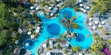 Allasalue, hotelli Melia Bali Villas & Spa. Nusa Dua, Bali.