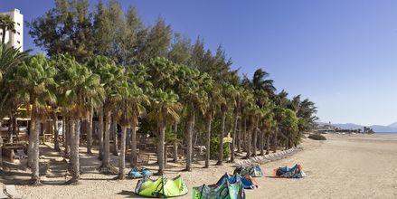 Rantaa hotellin edustalla, Melia Fuerteventura, Playa Barca, Fuerteventura.