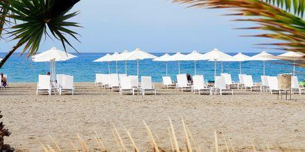 Läheinen ranta, Hotelli Minos Mare Royal, Rethymnonin rannikko, Kreeta.