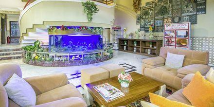 Aula, hotelli My Home. Alanya, Turkki.