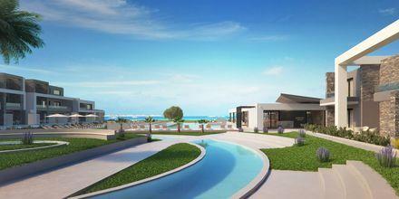 Havainnekuva allasalueesta. Hotelli Myrion Beach Resort, Gerani, Kreeta, Kreikka.