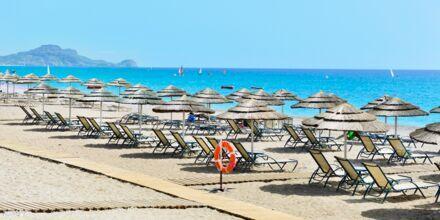 Läheinen ranta. Hotelli Mythos Beach Resort, Afandou, Rodos.