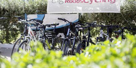 Vuokraa polkupyörä. Hotelli Mythos Beach Resort, Afandou, Rodos.