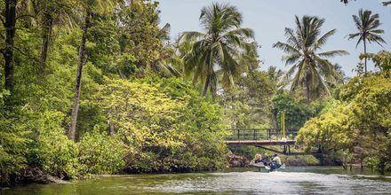 Negombo, Sri Lanka.