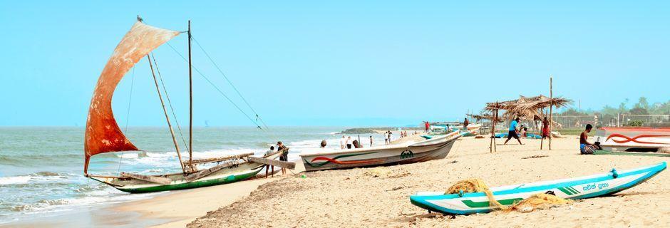 Kalastusveneitä. Negombo, Sri Lanka.