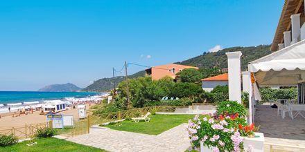 Hotelli Nereides. Agios Gordis, Korfu.