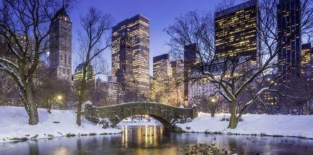 Talvinen Central Park on ilo silmälle.