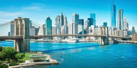 Brooklyn Bridge New Yorkissa.