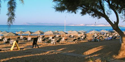 Ranta. Hotelli Ninemia Beach, Agia Marina, Kreeta.