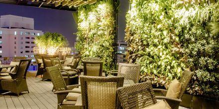 Kattoterassi, hotelli Northern Saigon. Vietnam.