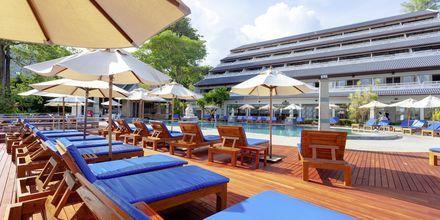 Allasalue. Hotelli Orchidacea Resort, Kata Beach, Phuket, Thaimaa.