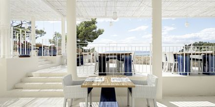 Hotelli Osejava, Makarska, Kroatia - Ravintola