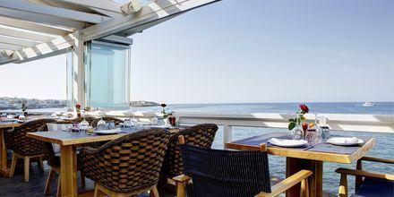 Ravintola. Hotelli Palmera Beach & Spa, Kreeta, Kreikka.