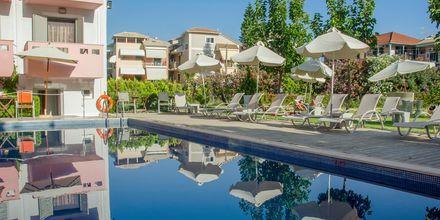 Hotelli Palmyra - Uima-allas