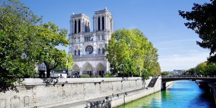Dotre Dame. Pariisi.