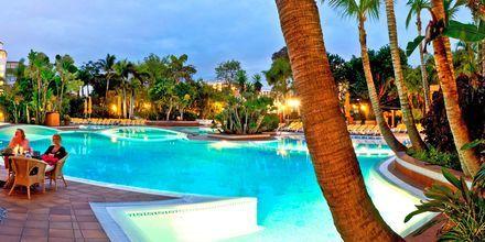 Allas. Hotelli Park Club Europe, Teneriffa.