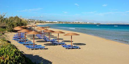 Golden Beach. Paros, Kreikka.