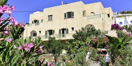 Rakennus, jossa on kahden hengen huoneita. Hotelli Petros Place, Ios, Kreikka.