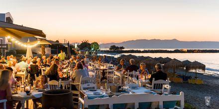 Nauti herkullinen illallinen Olive Tree -ravintolassa. Platanias, Kreeta, Kreikka.
