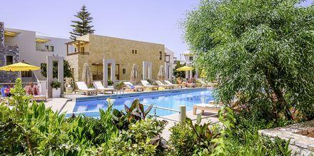 Allasalue, Hotelli Platanias Mare, Platanias, Kreeta.