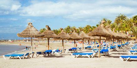 Ranta, Playa de las Americas, Teneriffa, Kanariansaaret.