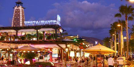 Playa de las Americaksessa on eloisa yöelämä.