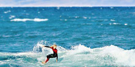 Playa de las Americas, Teneriffa.