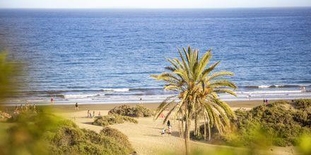 Playa del Inglés