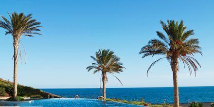Uima-allas. Playitas Hotel, Fuerteventura.
