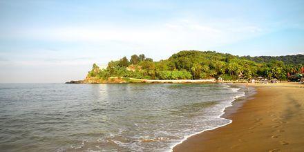 Baga Beach, Pohjois-Goa, Intia.