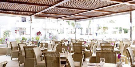 Ravintola, Allasalue, Hotelli Porto Platanias Villas, Kreta.