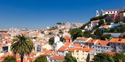 Portugali