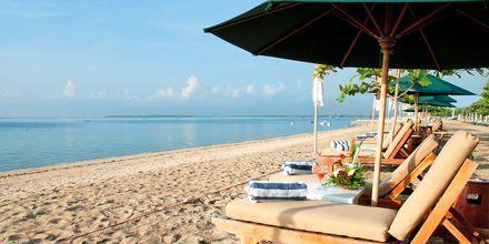 Ranta hotellin edustalla, Prama Sanur Beach, Sanur, Bali.