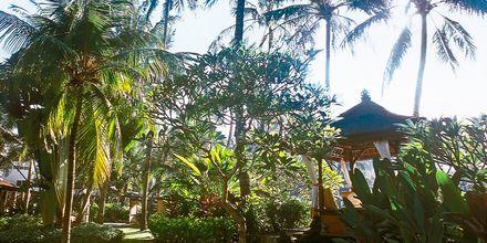 Prama Sanur Beach, Sanur, Bali.