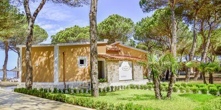 Vastaanotto. Hotelli Prestige Resort, Durresin Riviera, Albania.
