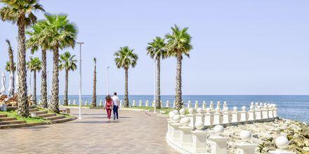 Rantakatu lähellä hotellia. Hotelli Prestige Resort, Durresin Riviera, Albania.