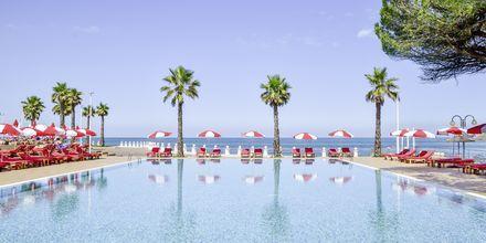 Merivesiallas. Hotelli Prestige Resort, Durresin Riviera, Albania.
