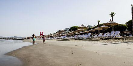Läheinen ranta. Hotelli Prestige Resort, Durresin Riviera, Albania.